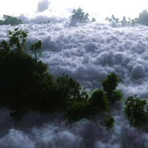 اجرای کمپ جنگل ابر